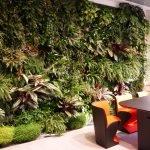 Garden of tropical agronomy